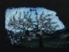 Ritorno dei fiori e dei frutti sulla terra, ciliegio, pastello su carta copiativa, cm 21x33