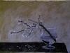 Ramo di mandorlo, 2012, pastello su carta nepalese, cm 51x74,5