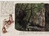Nymphae loci, dall\'album delle ninfe del luogo, pastello e penna su carta, cm 21x29,5