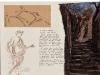 Nymphae loci, dall\'album delle ninfe del luogo, pastello e penna su carta, cm 21x20,5