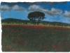 Campi a Grotta Porcina, 2002, pastello su carta nepalese, cm 24x33