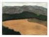 Campi a Montalcino, 1998, pastello su carta velluto, cm 24x33