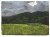 Pluscarden Abbey, 2001, pastello su carta nepalese, cm 24x32