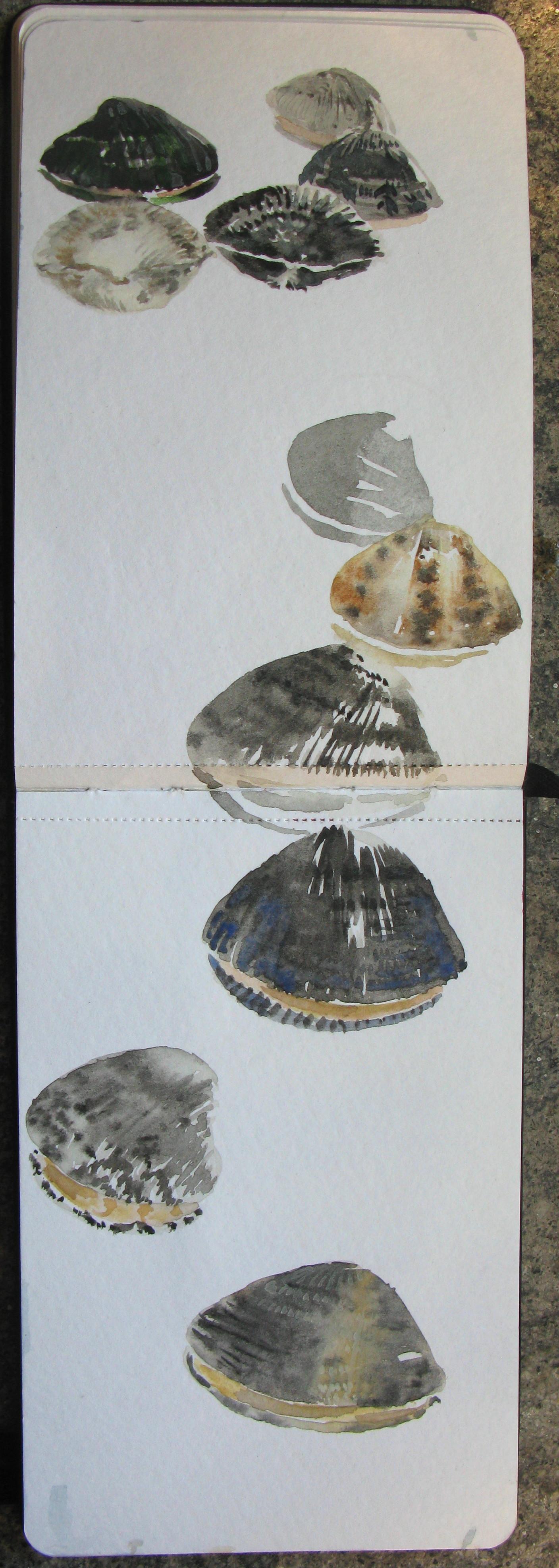 A 18) Appunti di viaggio per mare, 2011, acquerello, 28x9
