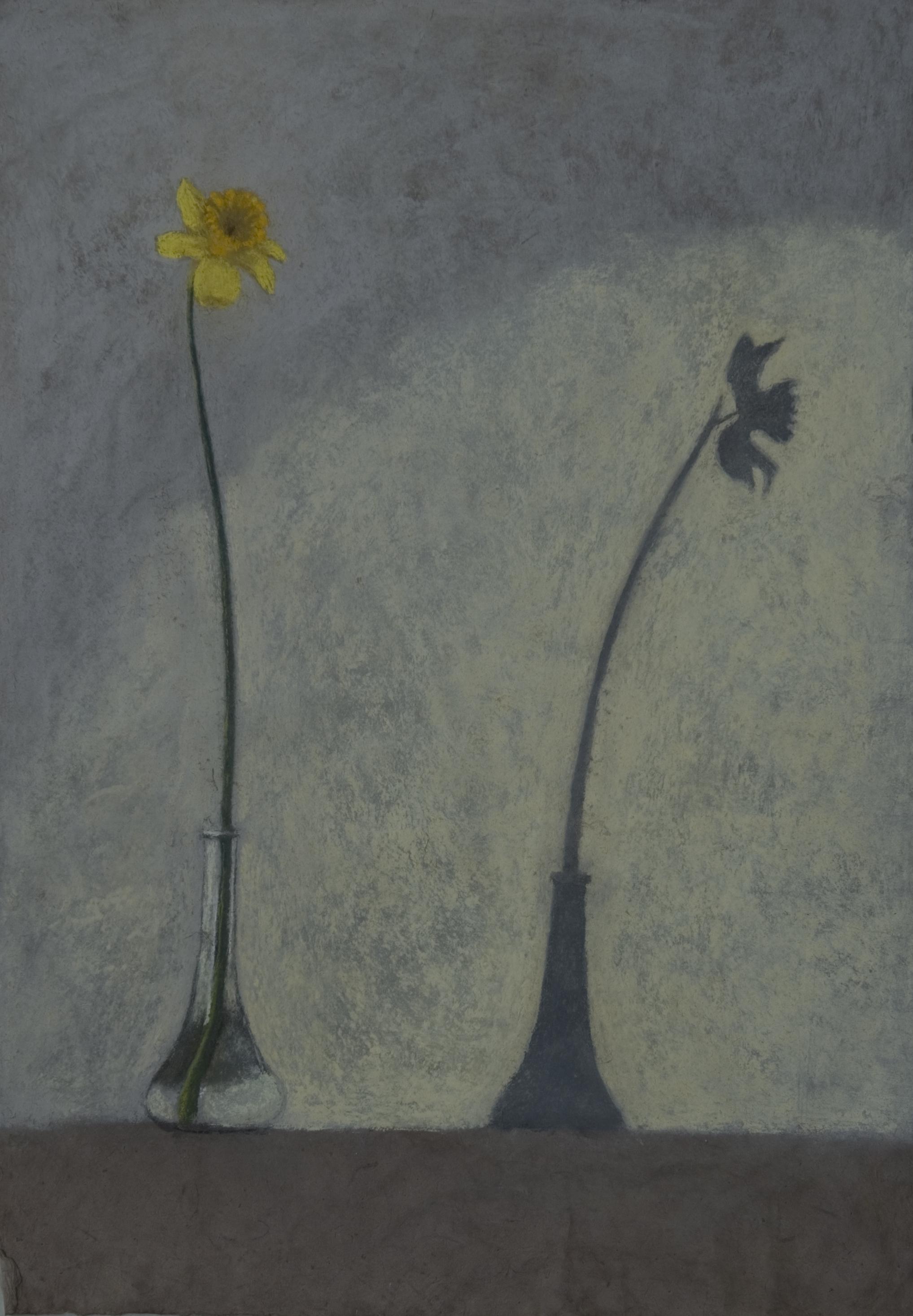 B 20) Narciso e l'ombra, 2009, pastello su carta nepalese, 75x50jpg