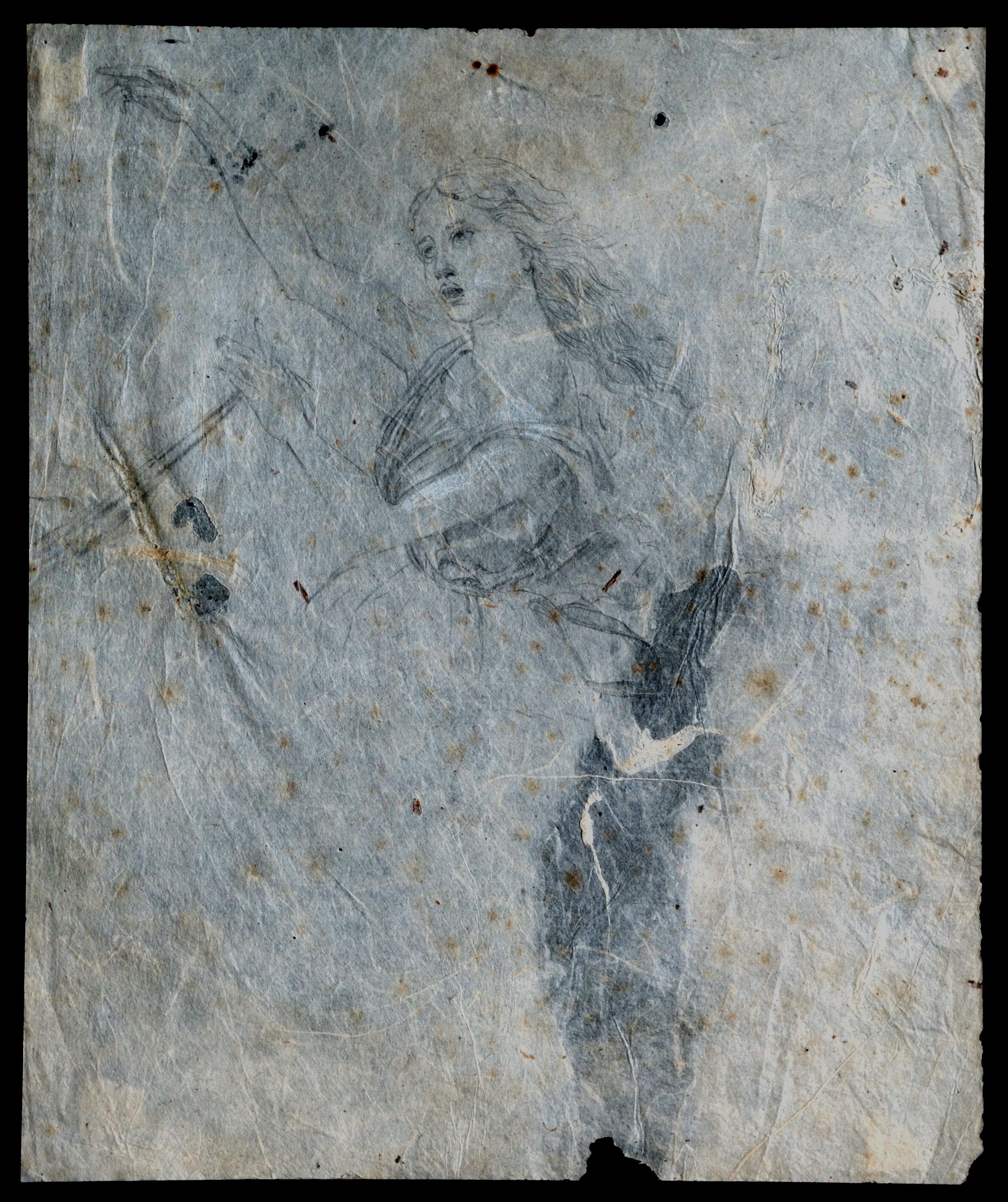 B 21) Nympha, grafite su carta nepalese