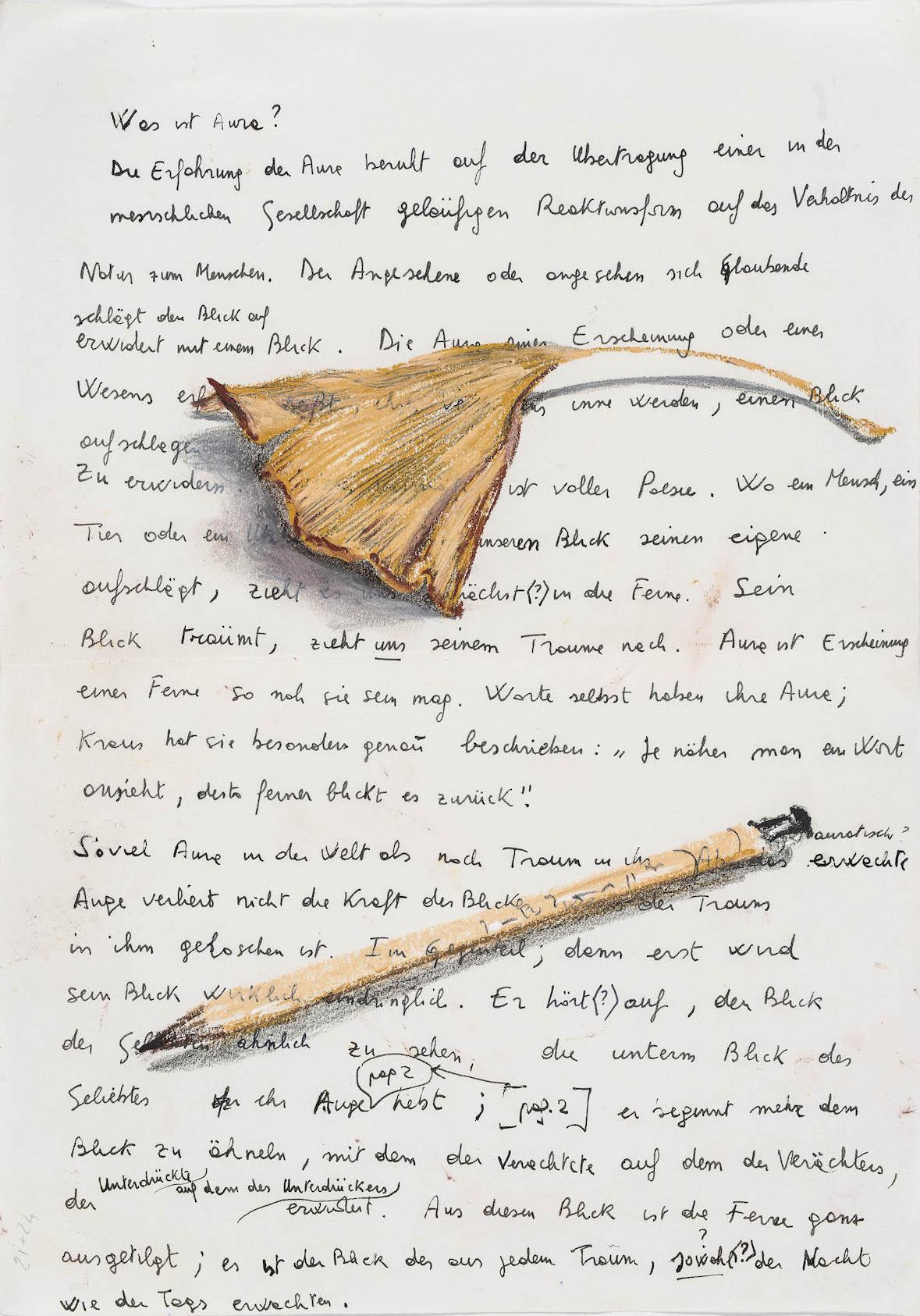 Nello spazio della scrittura,Foglia secca di ginko e matita su fotocopia di manoscritto di Walter Benjamin, 2018, pastello, 31x23